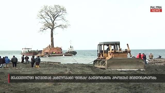 ასწლოვანი ტიტა ნაპირთან და გზის გაყვანა ზღვაში - დასრულდება თუ არა გიგანტური ხის მოგზაურობა დღეს?