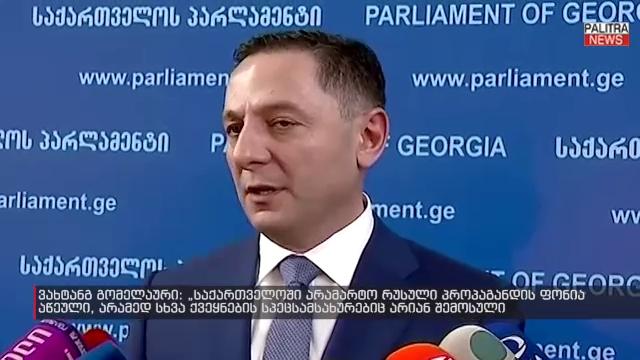 გომელაური: საქართველოში რუსული პროპაგანდის ფონი მომატებულია