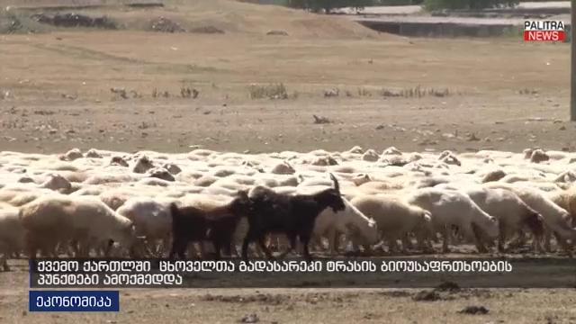 ცხოველთა გადასარეკი ტრასის ბიოუსაფრთხოების პუნქტები ქვემო ქართლში