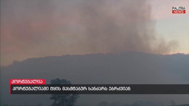 პორტუგალიაში ტყის მასშტაბურ ხანძარს ებრძვიან - ცეცხლი 6 ლოკაციაზეა მოდებული